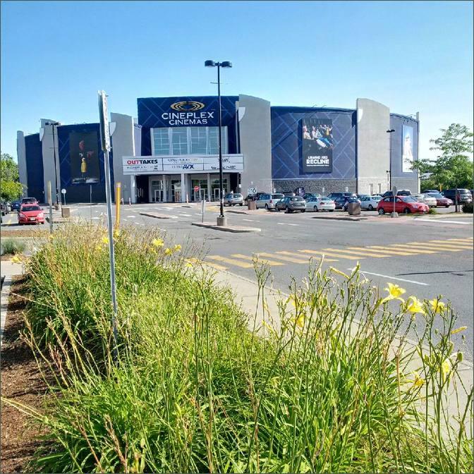 Coliseum Ottawa